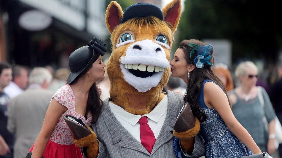Neddy the Horse revels in the attention at Ladies' Day at the Dublin Horse Show at the RDS