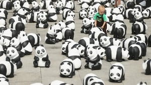 A young boy plays among a display of 1,600 styrofoam pandas in Berlin, Germany
