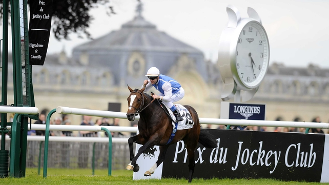 Intello scored at the top level for the first time in the Prix du Jockey Club at Chantilly in June