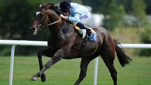 Telescope will be in the number one gate for the Breeders' Cup Turf