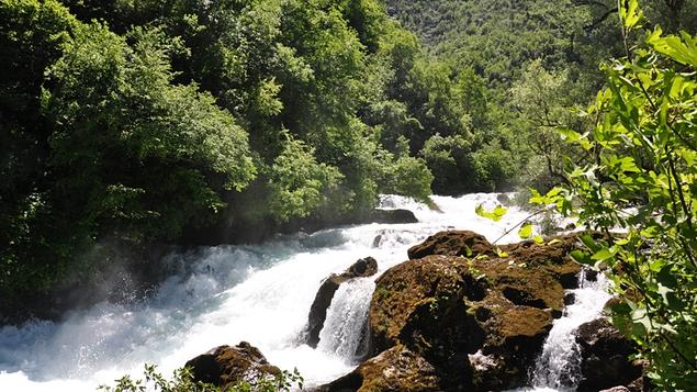 The source at Rijeka Crnojevica