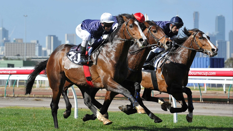 (L-R) Brett Prebble riding Sea Moon, Steven Arnold riding Masked Marvel and Eddie Cassar riding Seville during a track gallop in between races at Flemington Racecourse in Melbourne, Australia