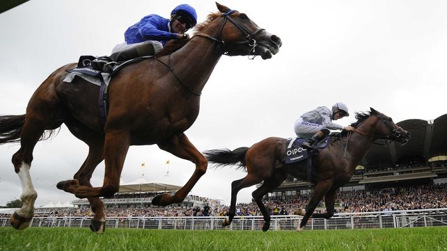 Dawn Approach (nearest) could yet face Toronado again (far side) in the QEII at Ascot on 19 October