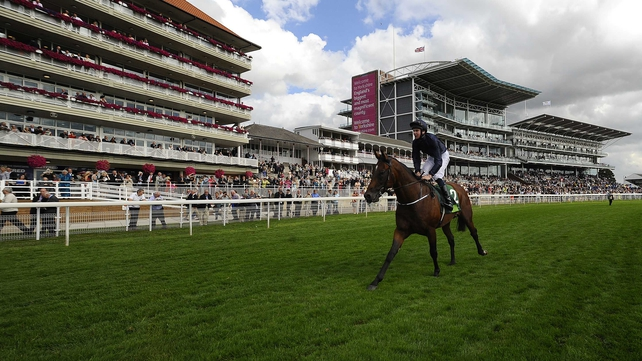 Declaration of War will run on dirt for the first time at the weekend