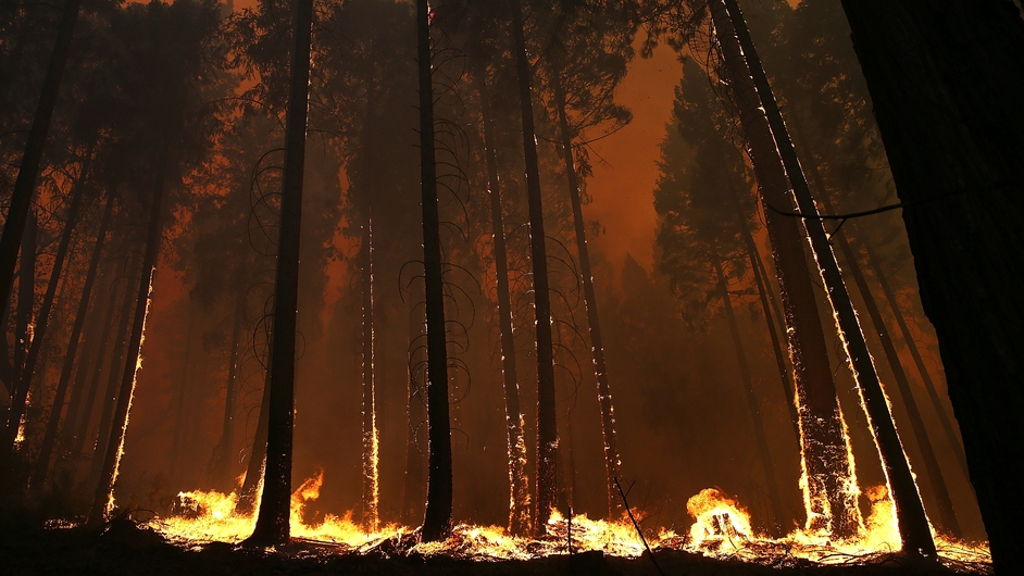 A forest fire burns in Buck Meadows, California