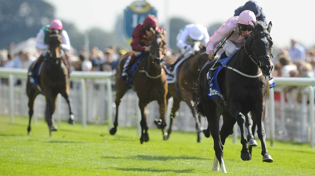 The Fugue's love of fast ground could yet propel her into clear favouritism for the Irish Champion Stakes