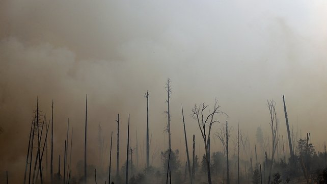 Thousands of acres of land have been burnt in the blaze