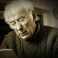 Seamus Heaney Tribute