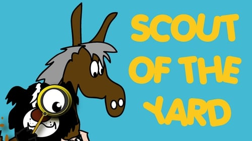 RTÉ Jr's new star - Scout of the Yard