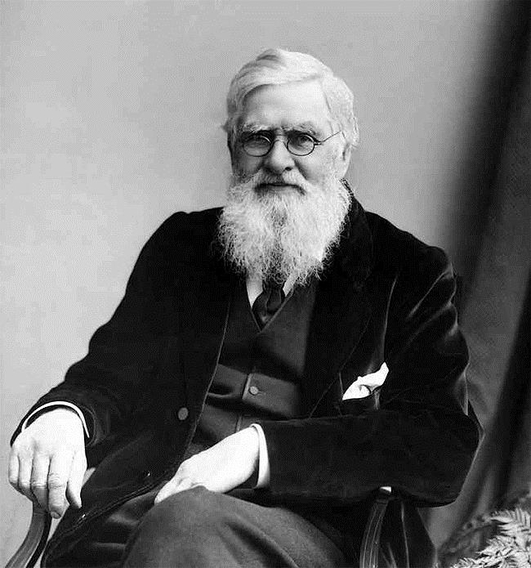Centenary Of Death Of Alfred Russel Wallace