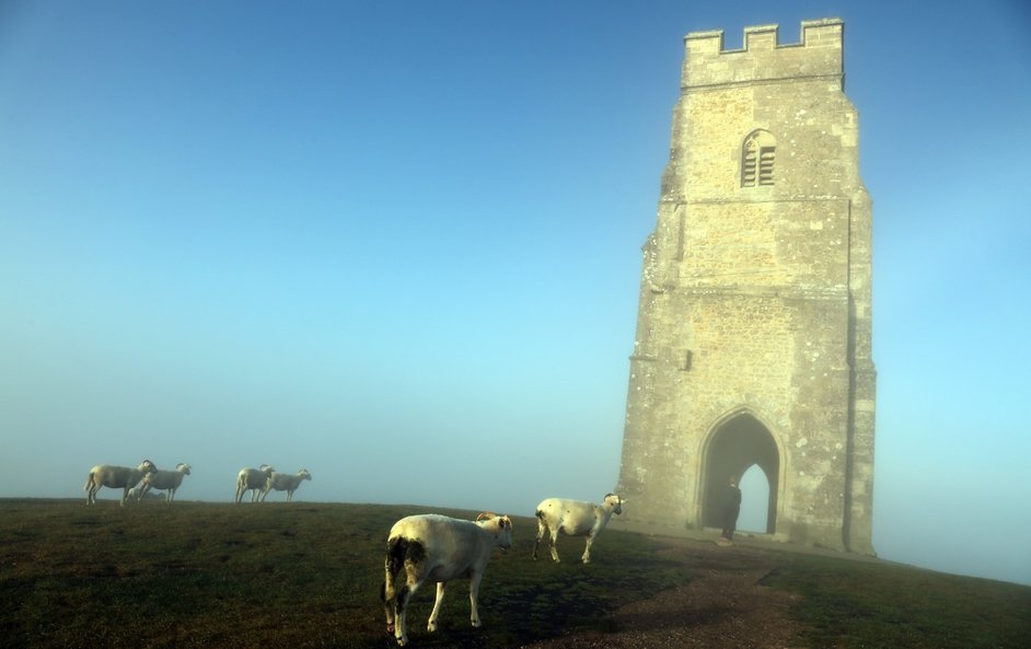 Sheep graze beside the 14th-century St. Michael's Tower, on Glastonbury Tor as the sun rises and begins to clear the early morning mist and fog