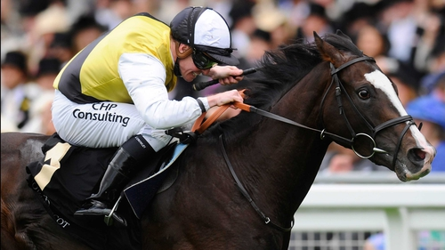 Berkshire was an aptly-named Royal Ascot winner in June
