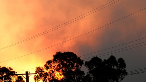 The Sydney bushfires started burning out of control on Tuesday