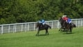 Panther ruled out of Irish St Leger