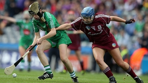Galway and Limerick faced off in the intermediate final