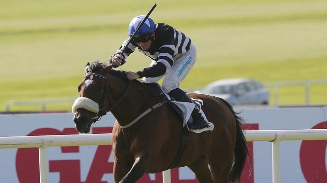 Voleuse de Coeurs winning the 2013 Irish St Leger at the Curragh