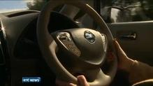 ESB hails electric car 'success'