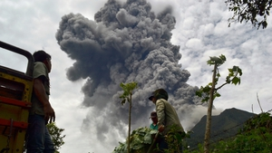 Indonesian farmers rush to harvest crops in the district of Karo as an ash cloud rises during a fresh eruption of the Mount Sinabung volcano