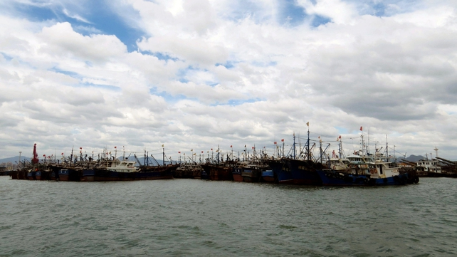 Chinese ships anchored at the harbour in Xiamen following a typhoon warning