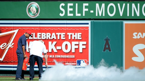 Ground staff attempt to remove bees that delayed the game at Angel Stadium