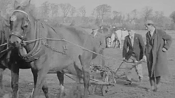 National Ploughing Championships 1961