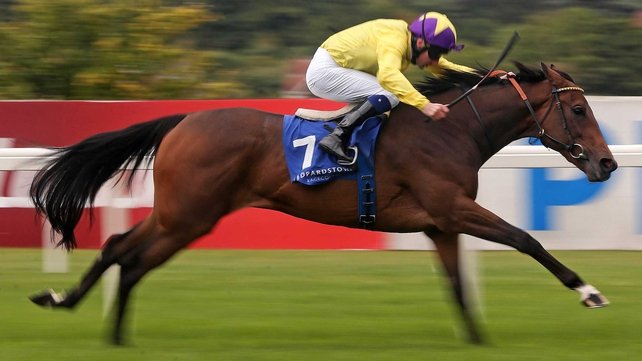 My Titania is the one to beat at the C.L. Weld Park Stakes