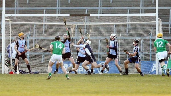 Limerick lost the Division 1B final