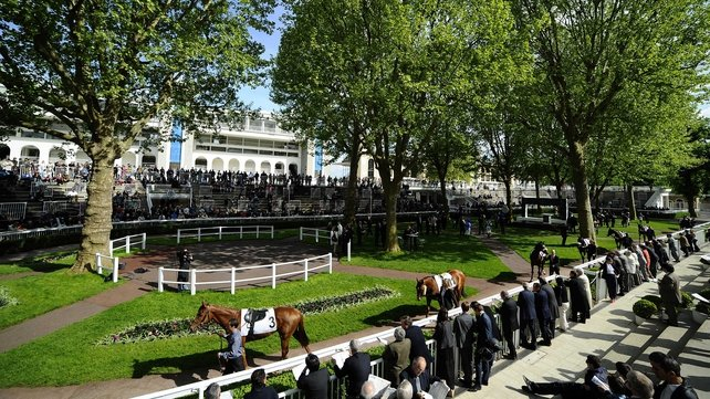 Another high-quality renewal of the Prix de l'Arc is in store this weekend