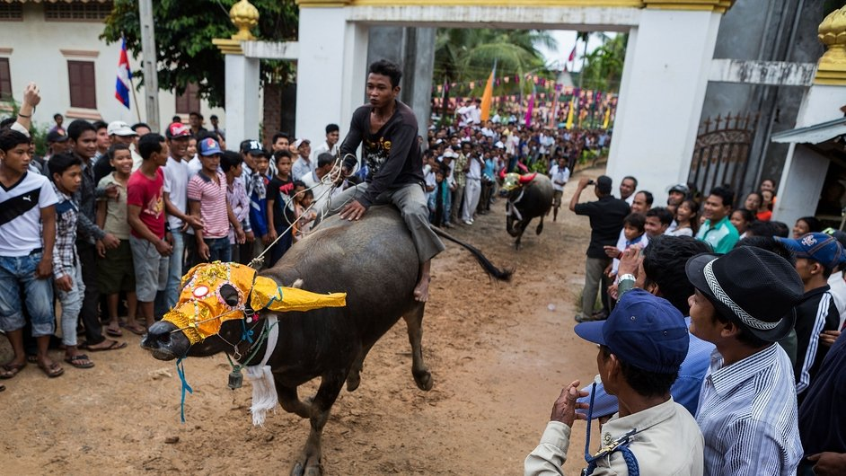 Buffalo riders compete during annual races held as part of the Festival of the Dead in Vihear Sour, Cambodia