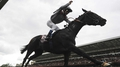 Arc defence the plan for Treve
