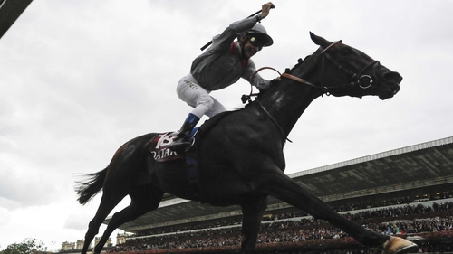 Arc heroine Treve is the highest-rated horse in training