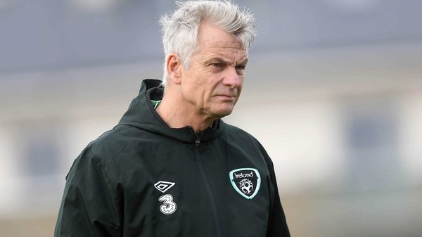 Ruud Dokter has warned that it may be some time before a new Ireland manager is named