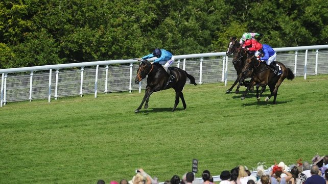 Brown Panther was an impressive winner of the Goodwood Cup