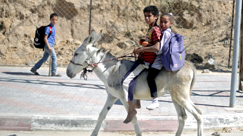 A Palestinian boy takes his sister to school on a donkey in Gaza