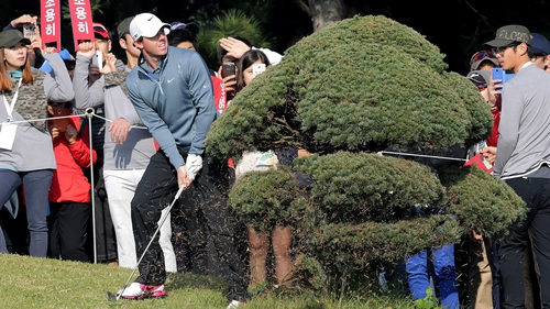 Rory McIlroy needed a tree iron to get past this obstruction in Korea