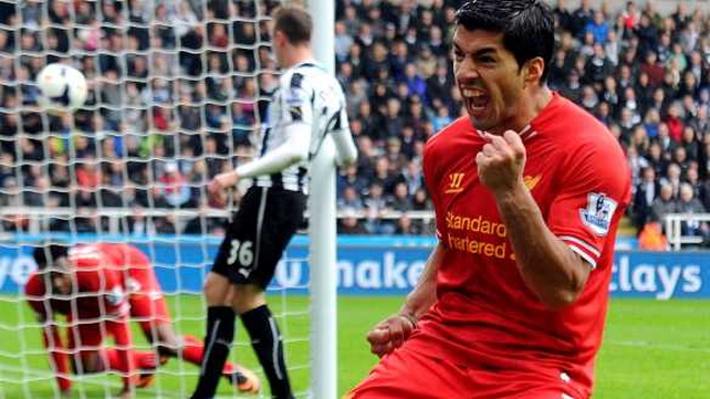 Luis Suarez celebrates after setting up a goal for  Daniel Sturridge
