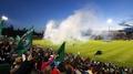 Ireland dominate against disjointed Australia