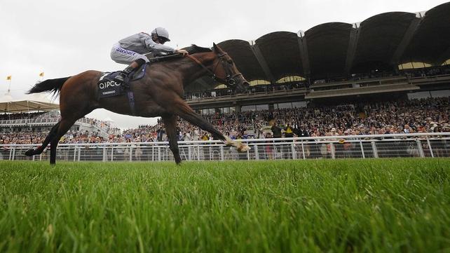 Toronado winning the Sussex Stakes earlier this season