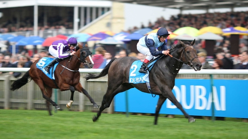 Kingston Hill won over a mile at the first attempt in the Autumn Stakes at Newmarket earlier this month