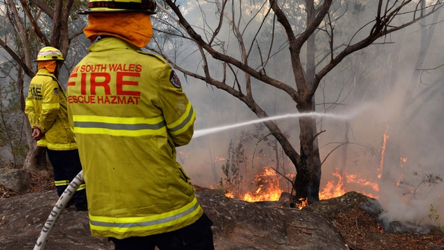 A firefighter hoses down the flames in a backburn at Faulconbridge in the Blue Mountains
