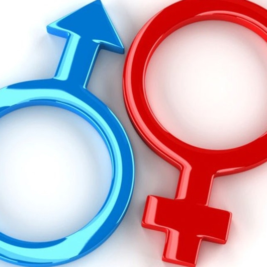Gender Conflicts