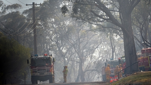 Firefighters are pictured along a neighbourhood street following a bush fire near Faulconbridge in the Blue Mountains