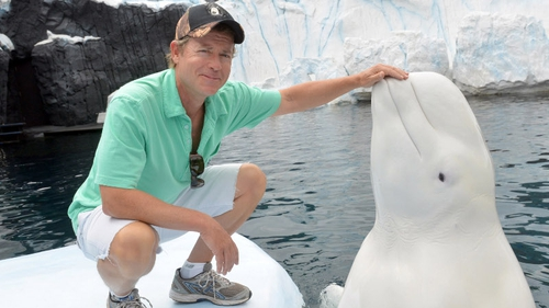 Greg Kinnear on a recent trip to Sea World in San Diego