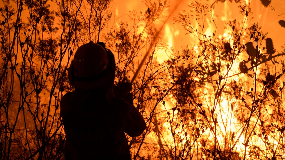 A firefighter attempts to extinguish a bushfire in Bilpin in the Blue Mountains in New South Wales
