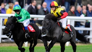 Phoebe Anderson rides Budd's Beauty (R) to win the Shetland Pony Gold Cup at Plumpton racecourse