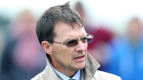 Aidan O'Brien saddles Carlo Bugatti and Kingfisher in the PW McGrath Memorial Ballysax Stakes