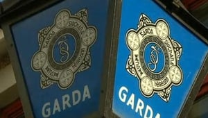 Gardaí say horse who was set alight had been dead for some time