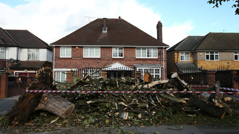 A fallen tree caused a devastating gas explosion in west London, destroying three homes