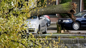 An uprooted tree falls on a car at the Ruysdaelkade canal in Amsterdam