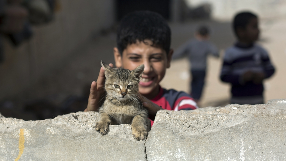 A Palestinian boy plays with a cat in the grounds of an abandoned house close to his home in Gaza City